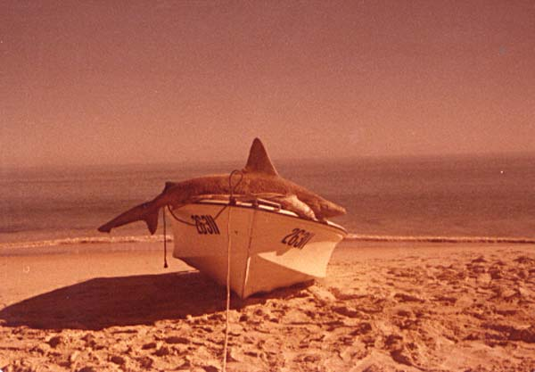 Cape_Peron_Shark_Bay_07.jpg