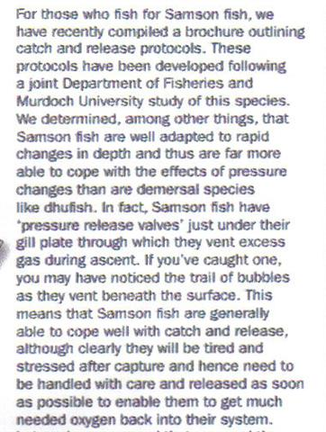 Samson Fish Catch and Release (Small).jpg