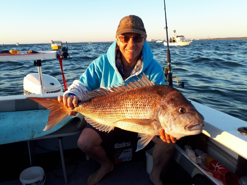 Great Afternoon Run Garden Island Snapper.jpg